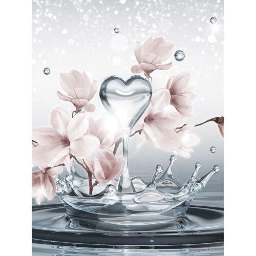 Consalnet Fototapete »Magnolie 3D im Wasser«, glatt, Motiv