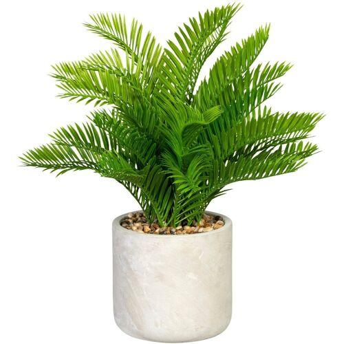 Creativ green Künstliche Zimmerpflanze »Farnbusch« Farnbusch, , Höhe 45 cm, im Zementtopf