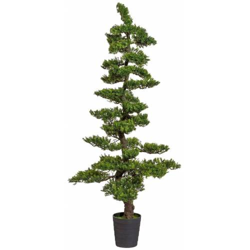 Creativ green Kunstpflanze »Bonsai Teeblatt«, , Höhe 180 cm, Höhe 180 cm