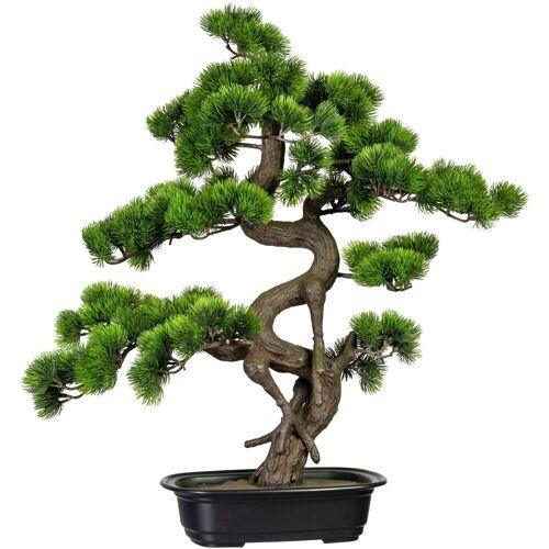 Creativ green Kunstbonsai »Bonsai Kiefer« Bonsai Kiefer, , Höhe 65 cm, in Schale
