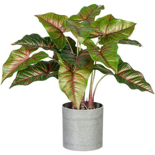 Creativ green Künstliche Zimmerpflanze »Taropflanze« Taropflanze, , Höhe 40 cm, im Melamintopf