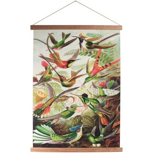 ART for the home Poster »Kolibris«, Vögel