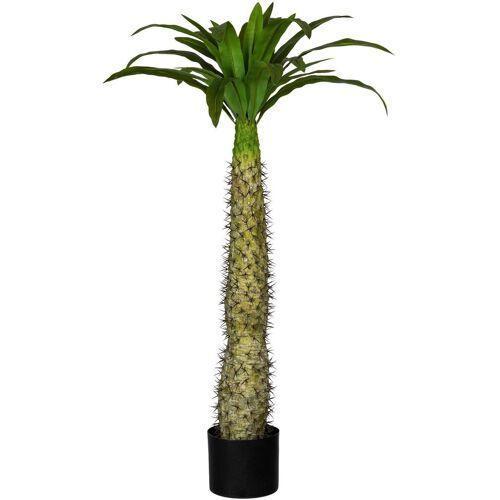 Creativ green Künstliche Zimmerpflanze »Madagaskarpalme Pachypodium« Madagaskarpalme Pachypodium, , Höhe 100 cm