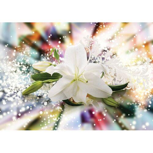 Fototapete »Magic Lilie«, verschiedene Motivgrößen, für das Büro oder Wohnzimmer