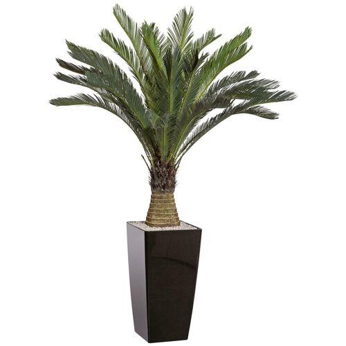 Creativ green Kunstpalme »Cycaspalme« Palme, , Höhe 130 cm, im Kunststofftopf