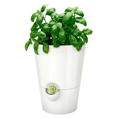 Emsa Kräutertopf »Kräutertopf Fresh Herbs«, Weiß