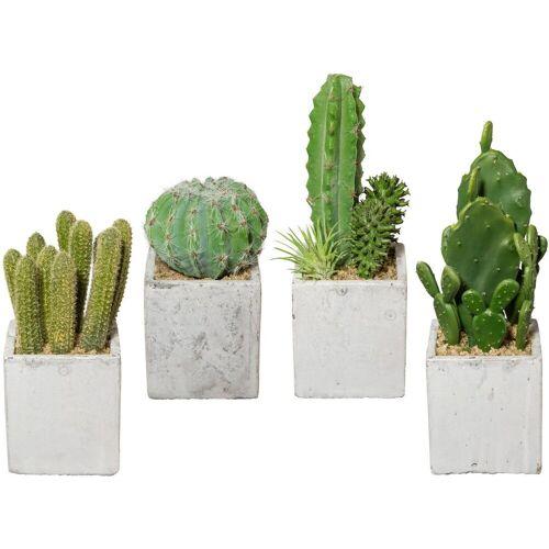 Creativ green Kunstkaktus »Kaktus«, , Höhe 22 cm, 4er Set, im Zementtopf