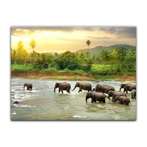 Bilderdepot24 Leinwandbild, Leinwandbild - Elefanten im Fluss