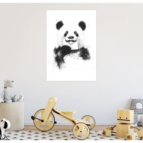 Posterlounge Wandbild, Funny panda