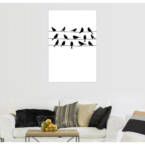 Posterlounge Wandbild, Vogelgezwitscher