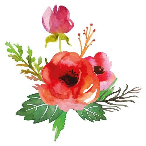 dekodino Wandtattoo »Aquarell Mohnblume sommerlich« (1 Stück)
