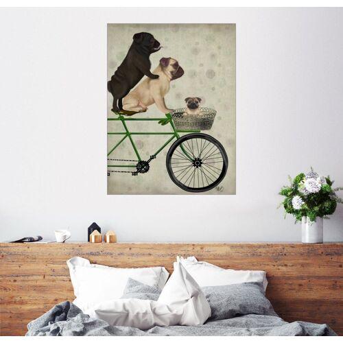 Posterlounge Wandbild, Premium-Poster Möpse auf einem Rad