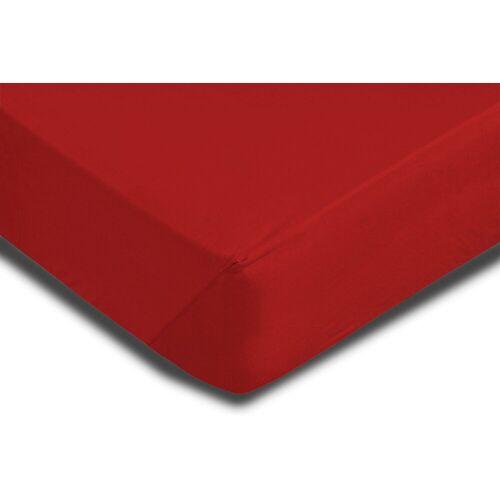 One Home Spannbettlaken »Mikrofaser«, , Single Pack mit Rundumgummizug, rot