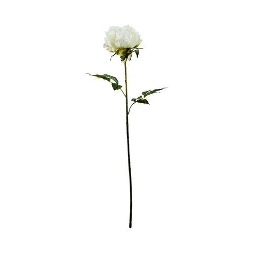 BUTLERS Kunstblume »FLORISTA Pfingstrose 75 cm«, Creme