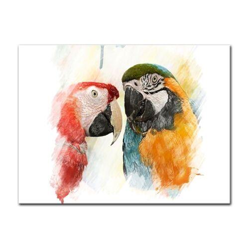 Bilderdepot24 Leinwandbild, Leinwandbild - Wasserfarbenbild - Papageien