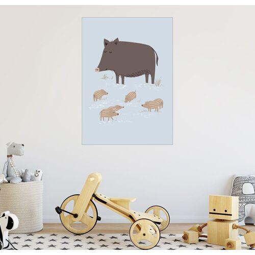 Posterlounge Wandbild, Wildschweine