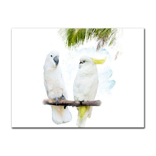 Bilderdepot24 Leinwandbild, Leinwandbild - Wasserfarbenbild - Kakadus