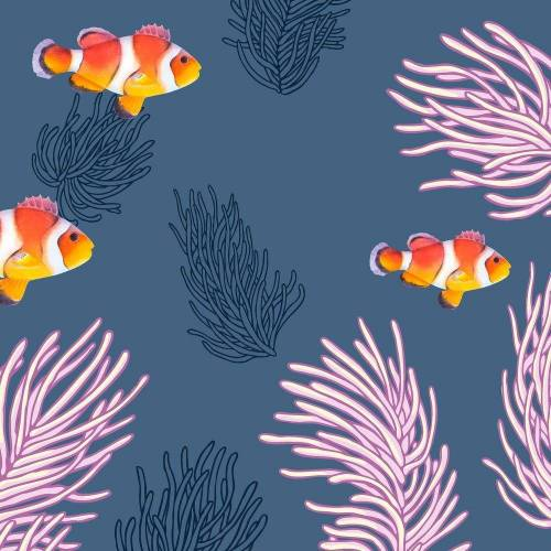 Paper+Design Papierserviette »Clownfische«, 33 cm x 33 cm