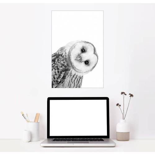 Posterlounge Wandbild, Premium-Poster Schneeeule