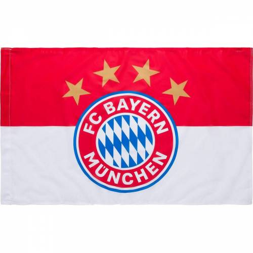 FC Bayern München Fahne »Fahne , Logo, 60 x 90 cm«
