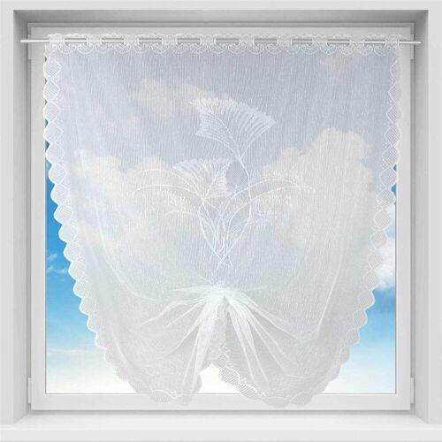 Arsvita Vorhang, , Stangendurchzug (1 Stück), Bistrogardine in Spitzenoptik, 100cm x 160cm (BxL) mit Stangendurchzug, Ziergras