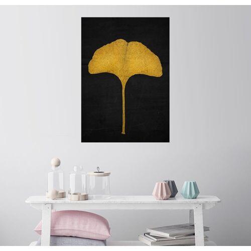 Posterlounge Wandbild, Goldenes Ginkgoblatt