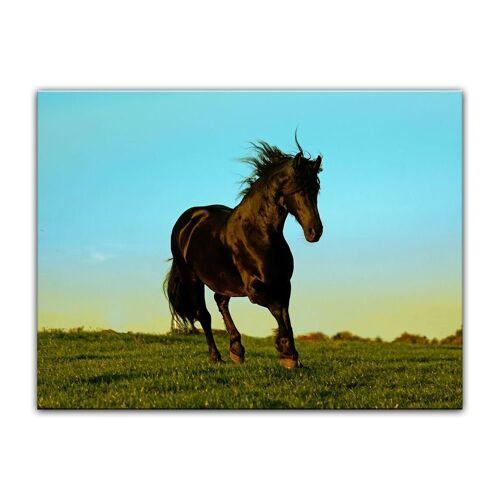 Bilderdepot24 Leinwandbild, Leinwandbild - Pferd