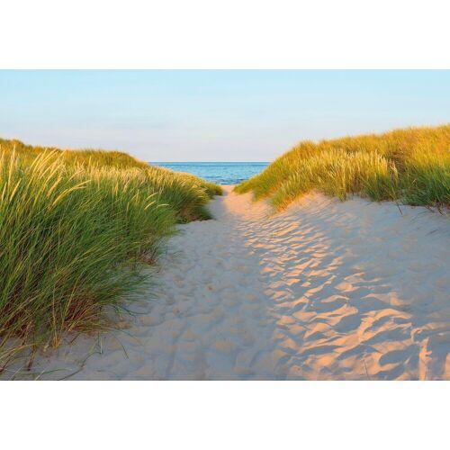Komar Fototapete »Sandy Path«, Strand
