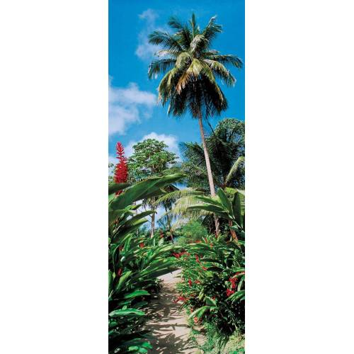 Papermoon Fototapete »Palm Path - Türtapete«, matt, (2 St), Vlies, 2 Bahnen, 90 x 200 cm