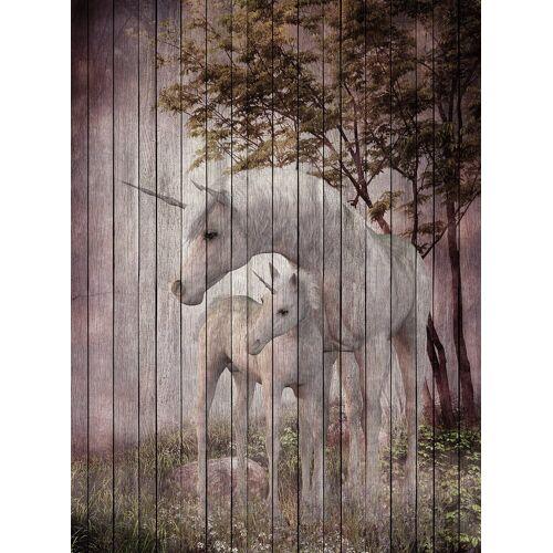 living walls Fototapete »Walls by Patel Fantasy 4«, glatt, (2 St)