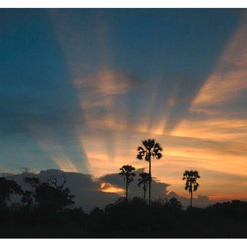Rasch Fototapete »Sonnenuntergang«, mehrfarbig, FSC®