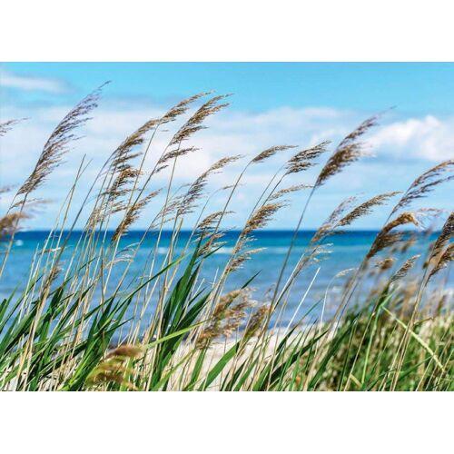 Fototapete »Nordsee«