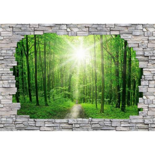 Fototapete »3D Sunny Forest Mauer«