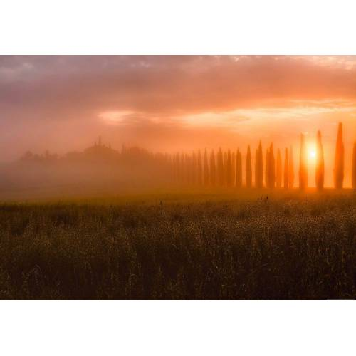 Idealdecor Fototapete »Toskana Sonnenaufgang«, Vlies, 4 Bahnen, 368 x 254 cm, bunt