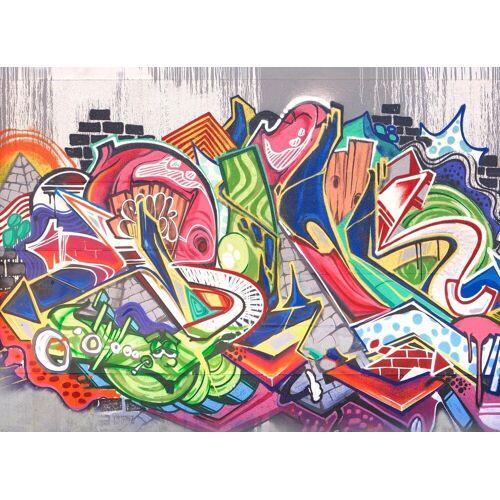 living walls Fototapete »Graffiti Vlies«, matt, glänzend, 350 x 255 cm, bunt