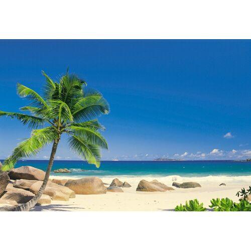 Komar Fototapete »Seychellen 270/194«, Strand