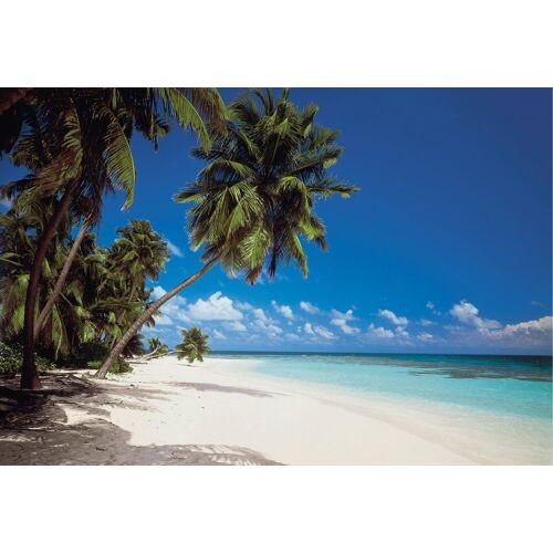 Komar Fototapete »Malediven 8tlg 388x270cm«, naturalistisch