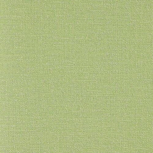 Bodenmeister Vliestapete »Uni Birkengrün«, 10,05 x 0,53 m