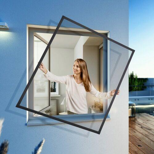 Insektenschutz-Fenster »EXPERT Spannrahmen«, BxH: 140x150 cm