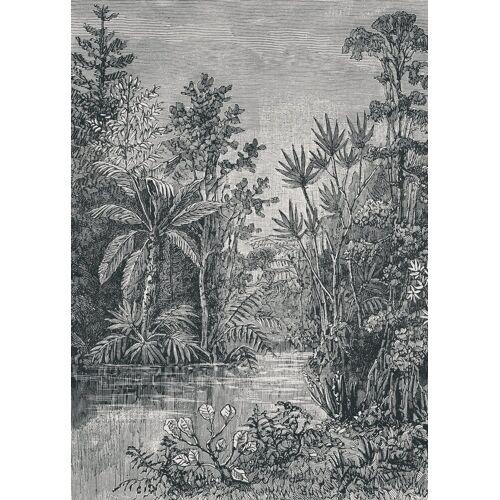 ART for the home Fototapete »Jungle«, 200 cm Länge