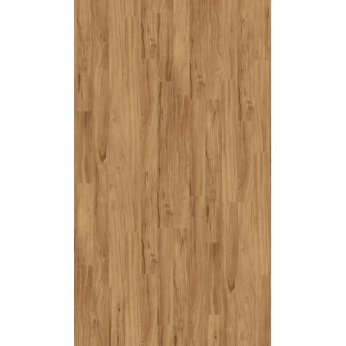 PARADOR Laminat »Basic 400 - Apfel Bernstein«, Packung, ohne Fuge, 1285 x 194 mm, Stärke: 8 mm