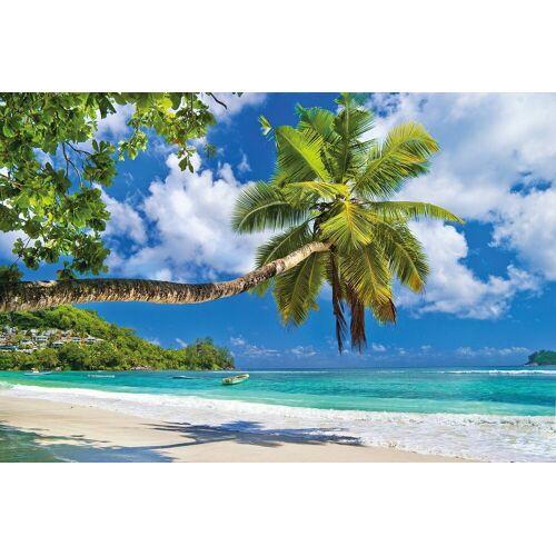 Papermoon Fototapete »Seychelles Palm Beach«, Vlies, 7 Bahnen, 350 x 260 cm