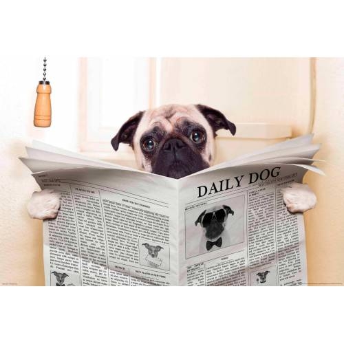 Papermoon Fototapete »Newspaper Dog«, glatt