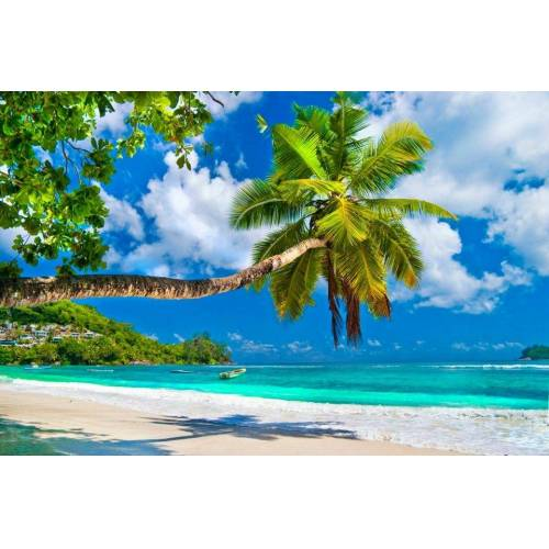 Papermoon Fototapete »Seychelles Palm Beach«, BlueBack, 7 Bahnen, 350 x 260 cm, bunt