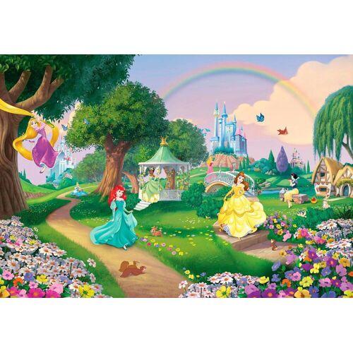 Komar Fototapete »Disney Princess Rainbow«, bunt