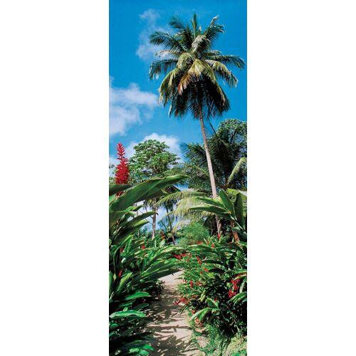 Papermoon Fototapete »Palm Path - Türtapete«, matt, (2 St), BlueBack, 2 Bahnen, 90 x 200 cm