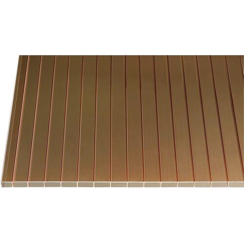 GUTTA Doppelstegplatte »CRYL«, Acryl Hohlkammerplatte 16 mm, BxL: 98x400 cm