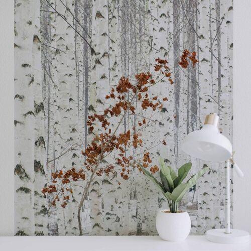 A.S. Création Fototapete, Vlies Foto Tapete Birkenwald - White Birch Forest DD119078 Tapete