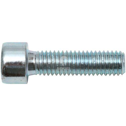 RAMSES Zylinderschraube, (Set, 100 St), M8 x 30 mm SW6