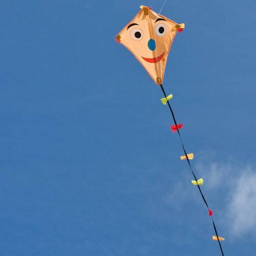 HQ Flug-Drache »Drachen Line Eddy Happy Face 50cm«